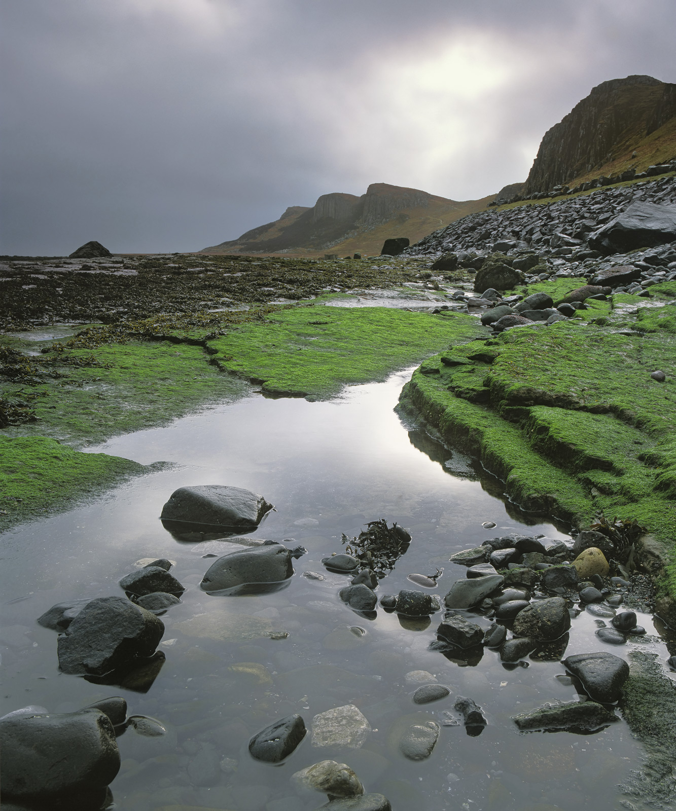 Staffin is a beach I am always drawn too. It is backed by fluted cliffs composed of basalt columns and those self same...