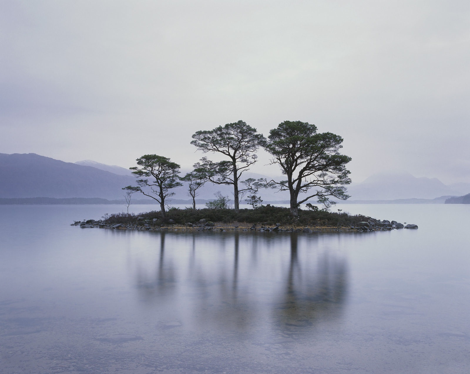 Slattadale Island, Slattadale, Torridon, Scotland, cold, dreary, understated, soft, light, island, trees, reflection, Sl, photo