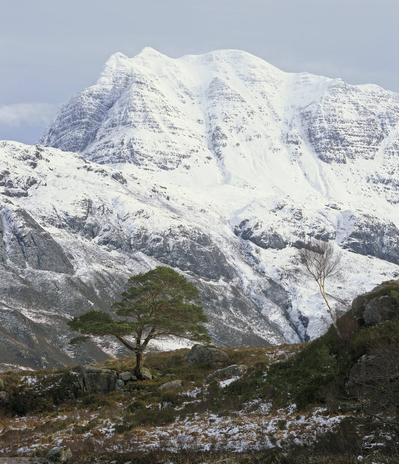 Like a mighty white molar, Slioch lords over Loch Maree with a brilliant white crown of snow. Below it is a solitary Scots...