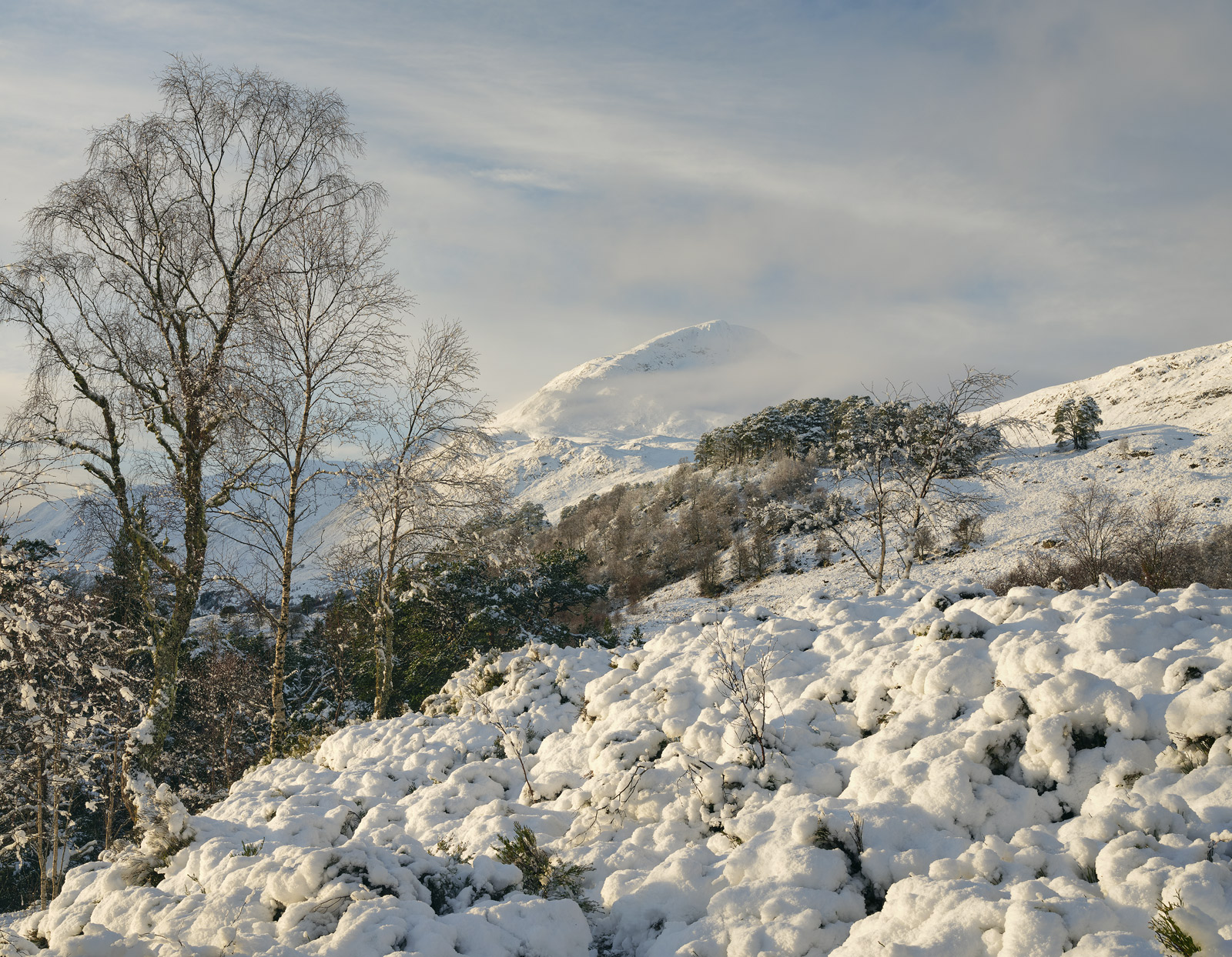 At the very end of the public road that travels through Glen Affric is a superb view of the mountain peaks and on this fabulous...