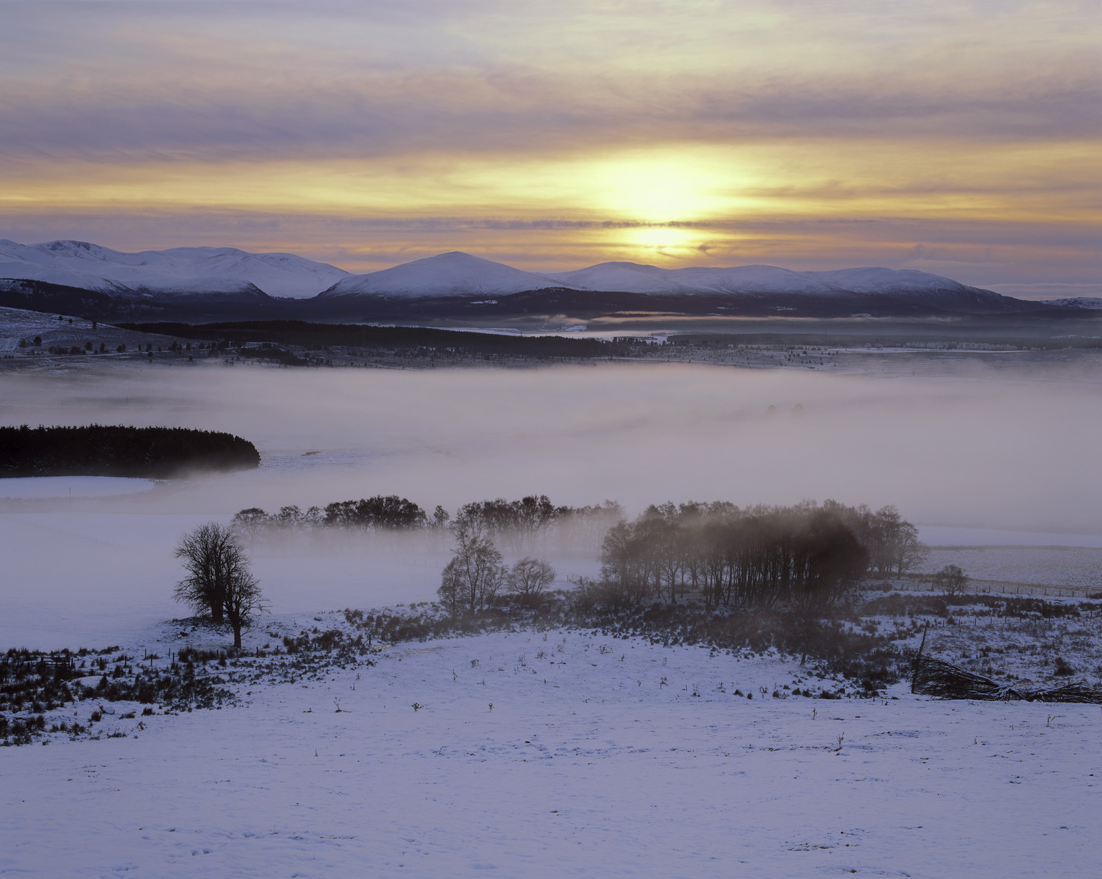 Winter mist collects in the Spey basin as the intense evening cold condenses out the moisture and thereafter develops into freezing...