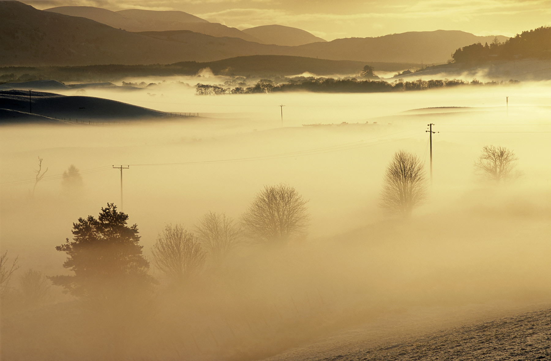 Backlit mist hangs wraith like over the River Spey as it flows down the valley toward the town of Grantown-On-Spey. As...