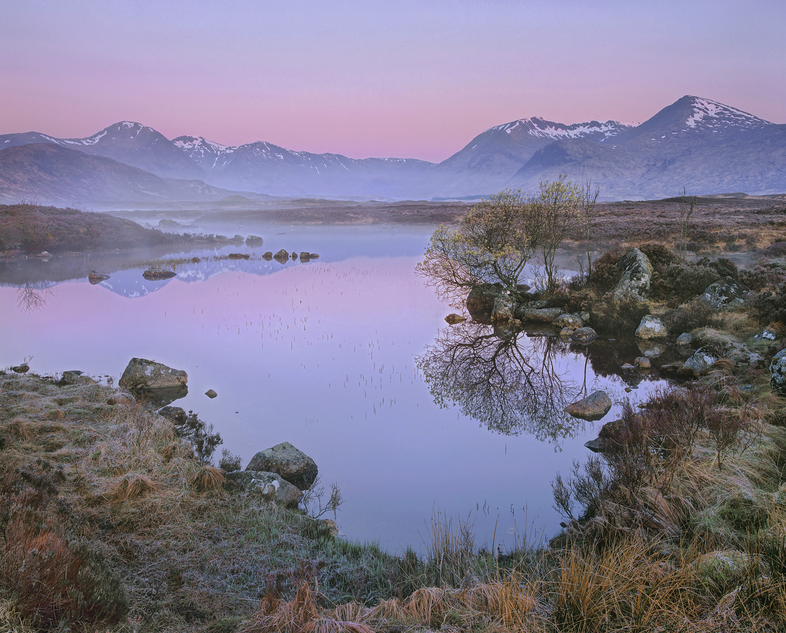 The beautiful magenta blush is from the softest of pink sunrises that generated over the Blackmount as viewed from high on Rannoch...
