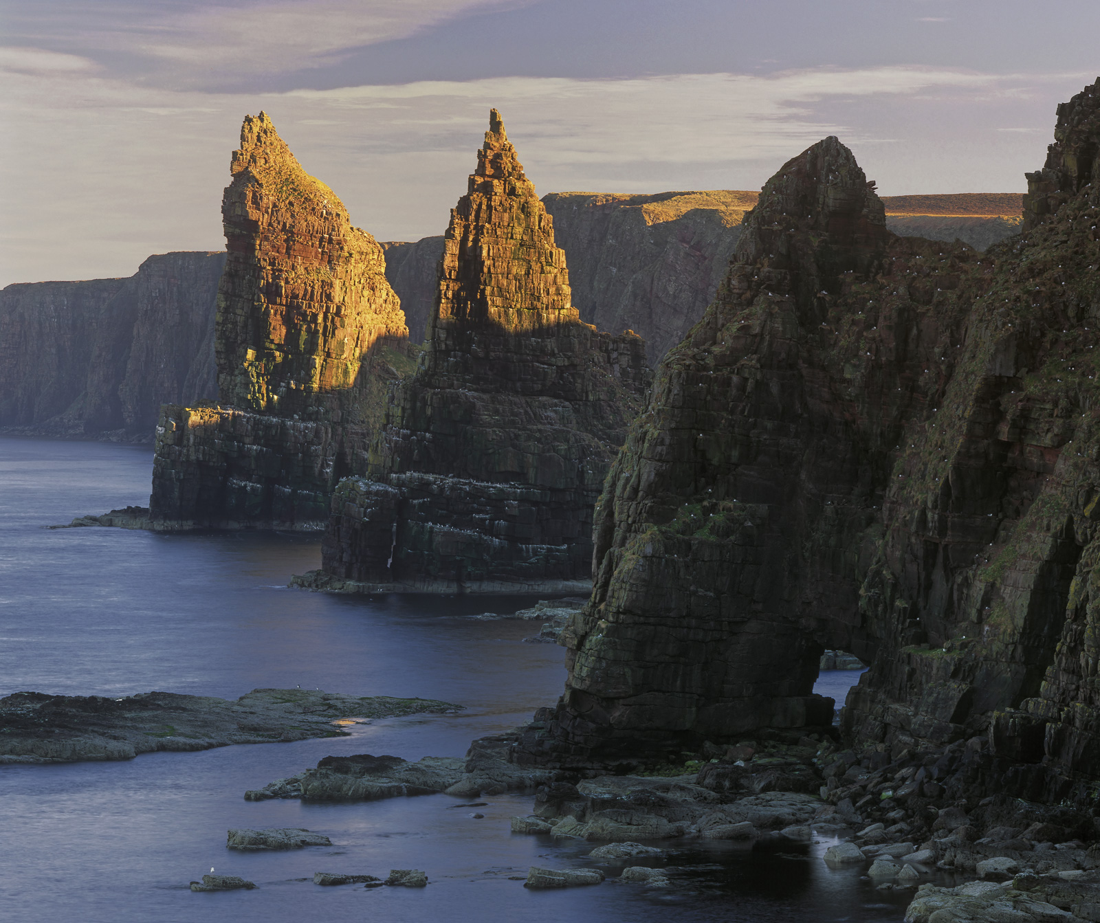 Stacks of Duncansby, Duncansby Head, Caithness, Scotland, coastal, viewpoint, compressed, majesty, stacks, sea, gulls, g, photo