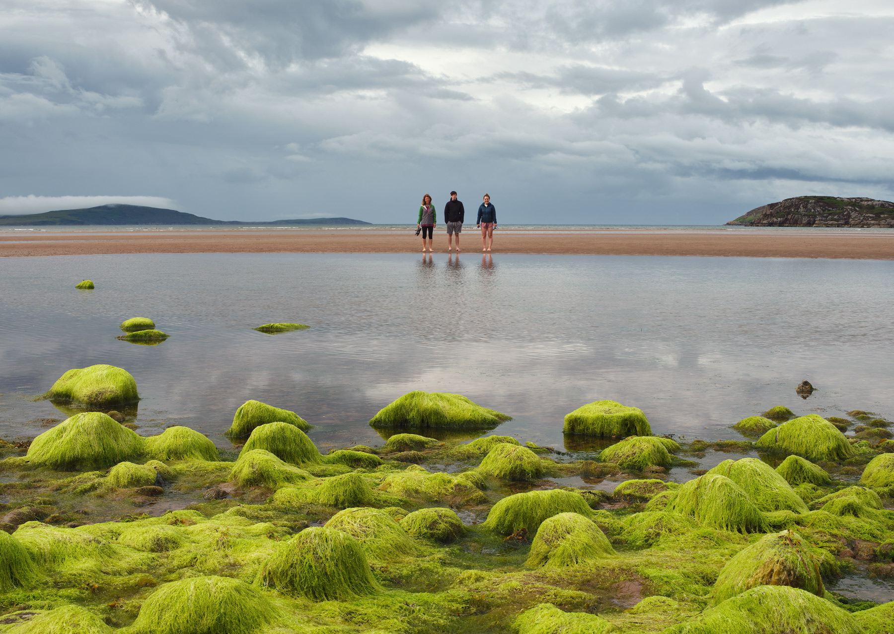 Fluorescent green sea weed drapes over rocks and pebbles bordering a tidal pool in Gruinard Bay at Wester Ross.