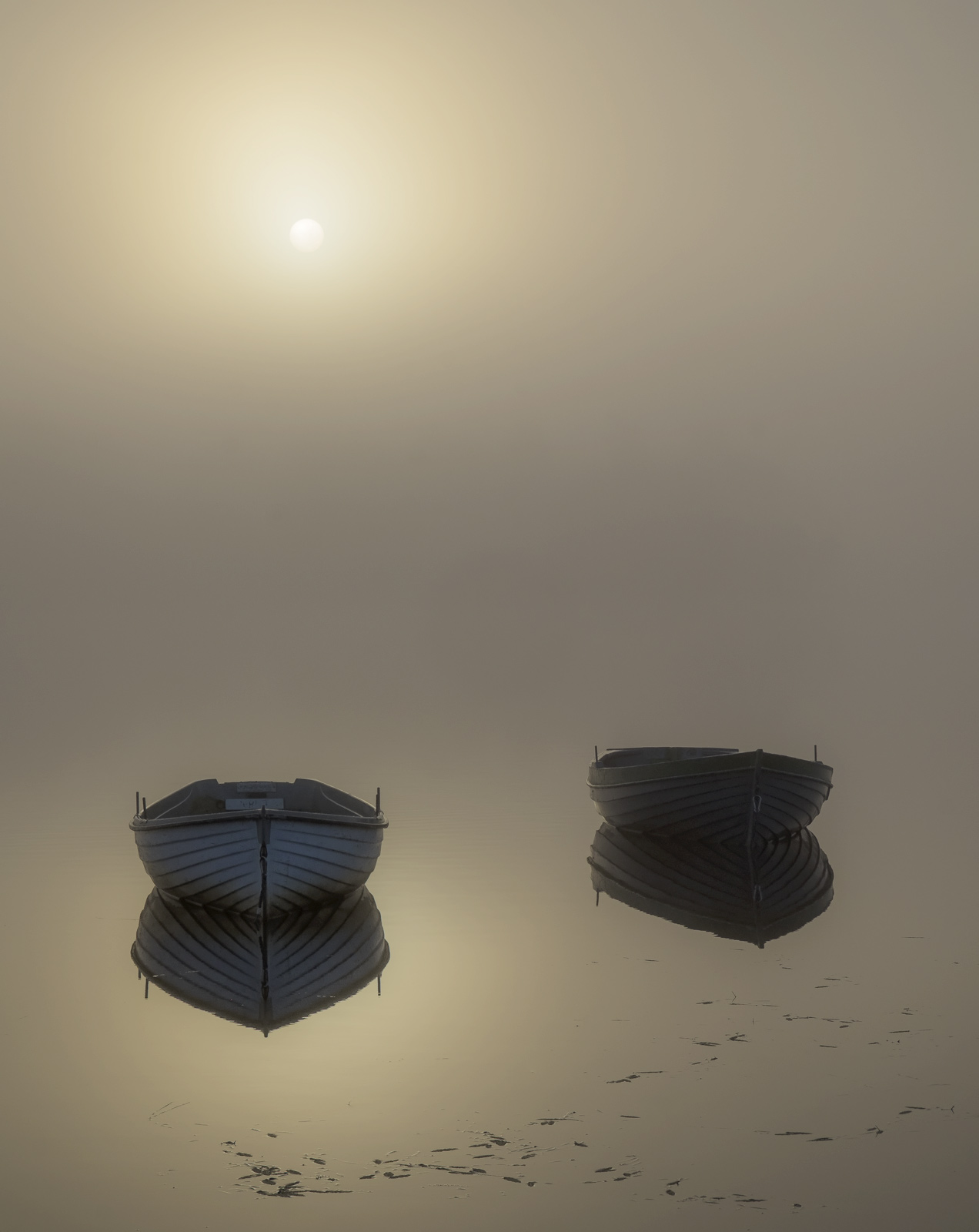 Sublime Rusky 3, Loch Rusky, Trossachs, Scotland, pair, pale blue, rowing boats, wood, sunrise, mist, reflected, etherea, photo