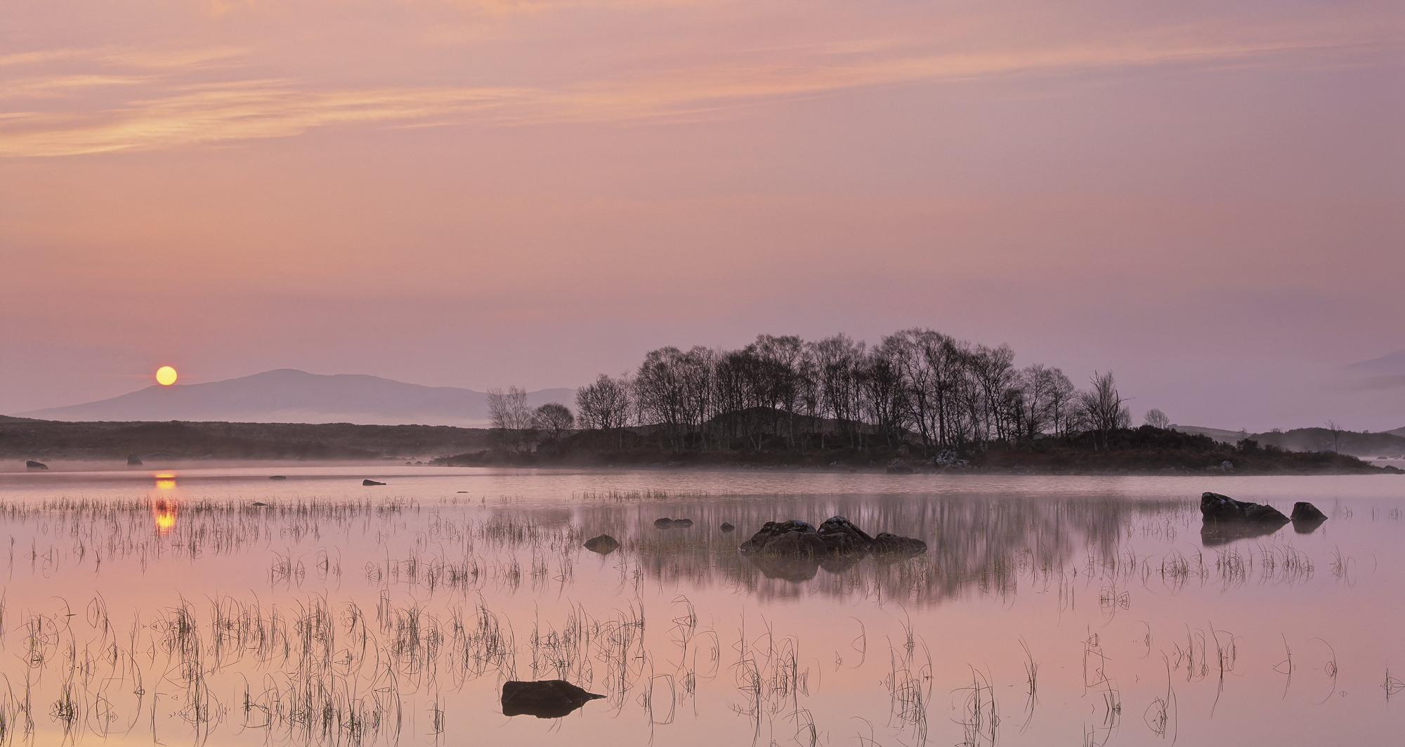 A perfect Spring morning at the edge of the lochs that line the A82 on Rannoch moor. I took a boggy stroll down to the...