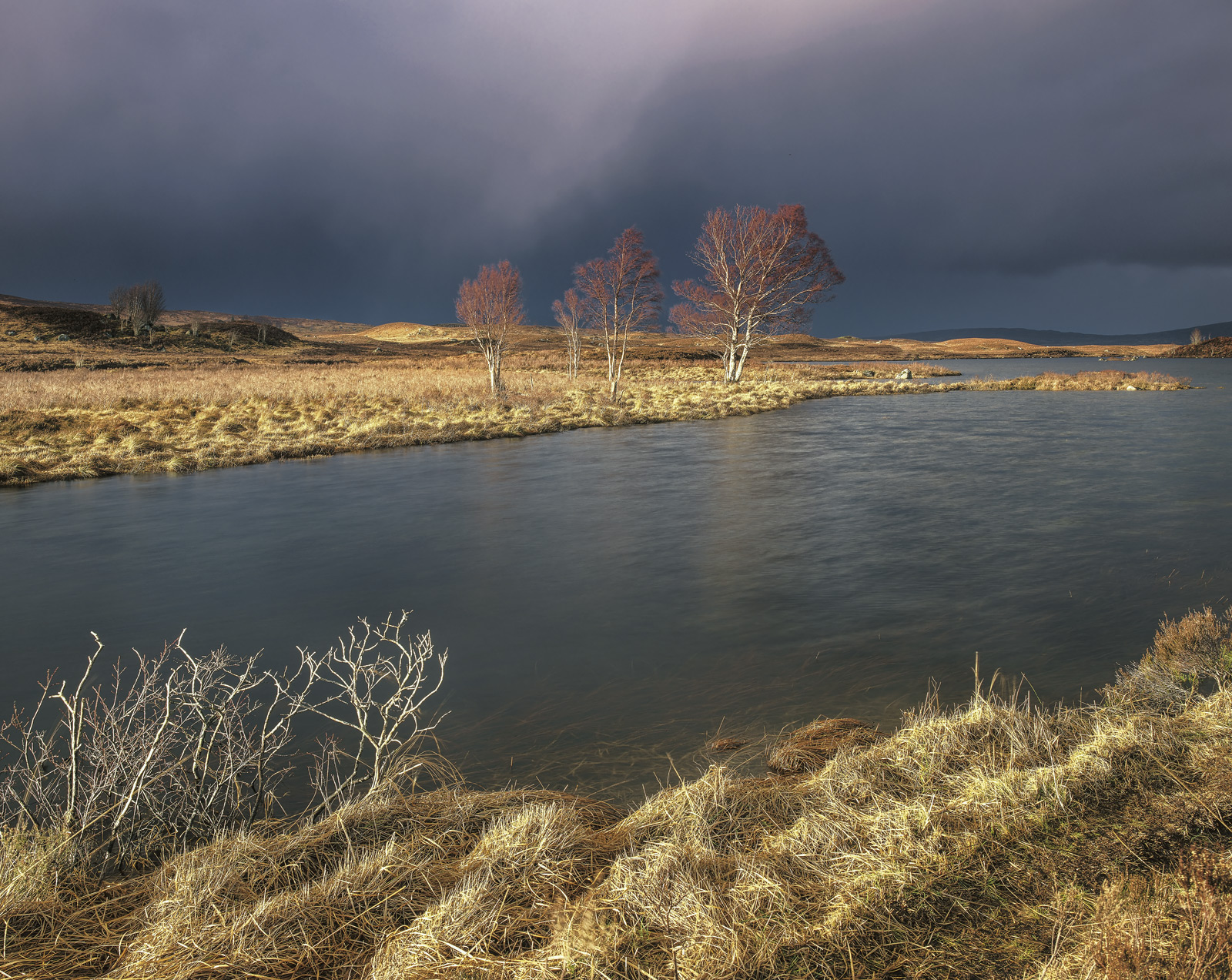 At the very edge of a weather front on a stormy early Spring day I was treated to light of such extraordinary quality that it...