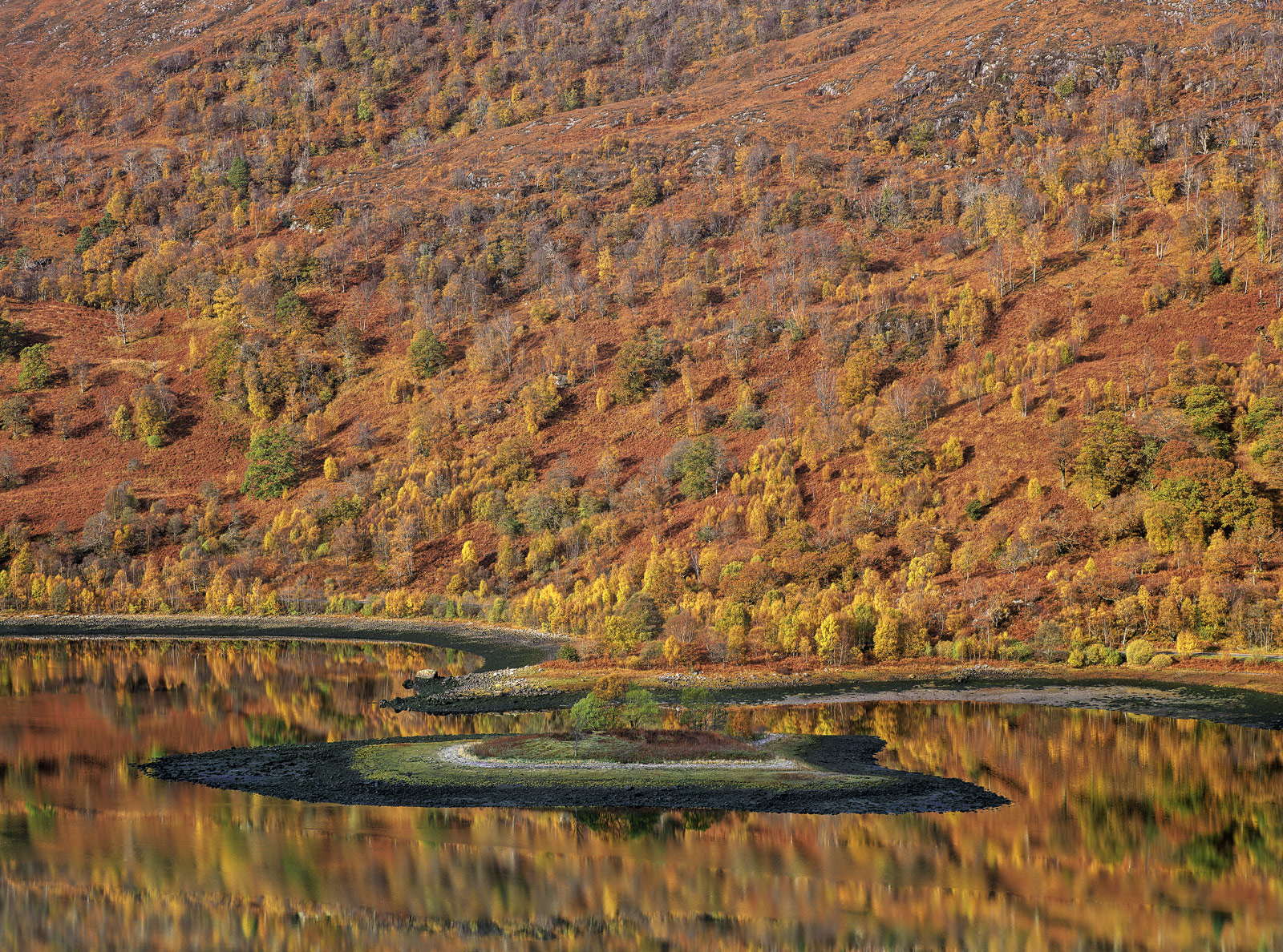 A wall of Autumn colour on the slopes of the Mamores is reflected in the water at the end of the tidal loch at Kinlochleven.&...
