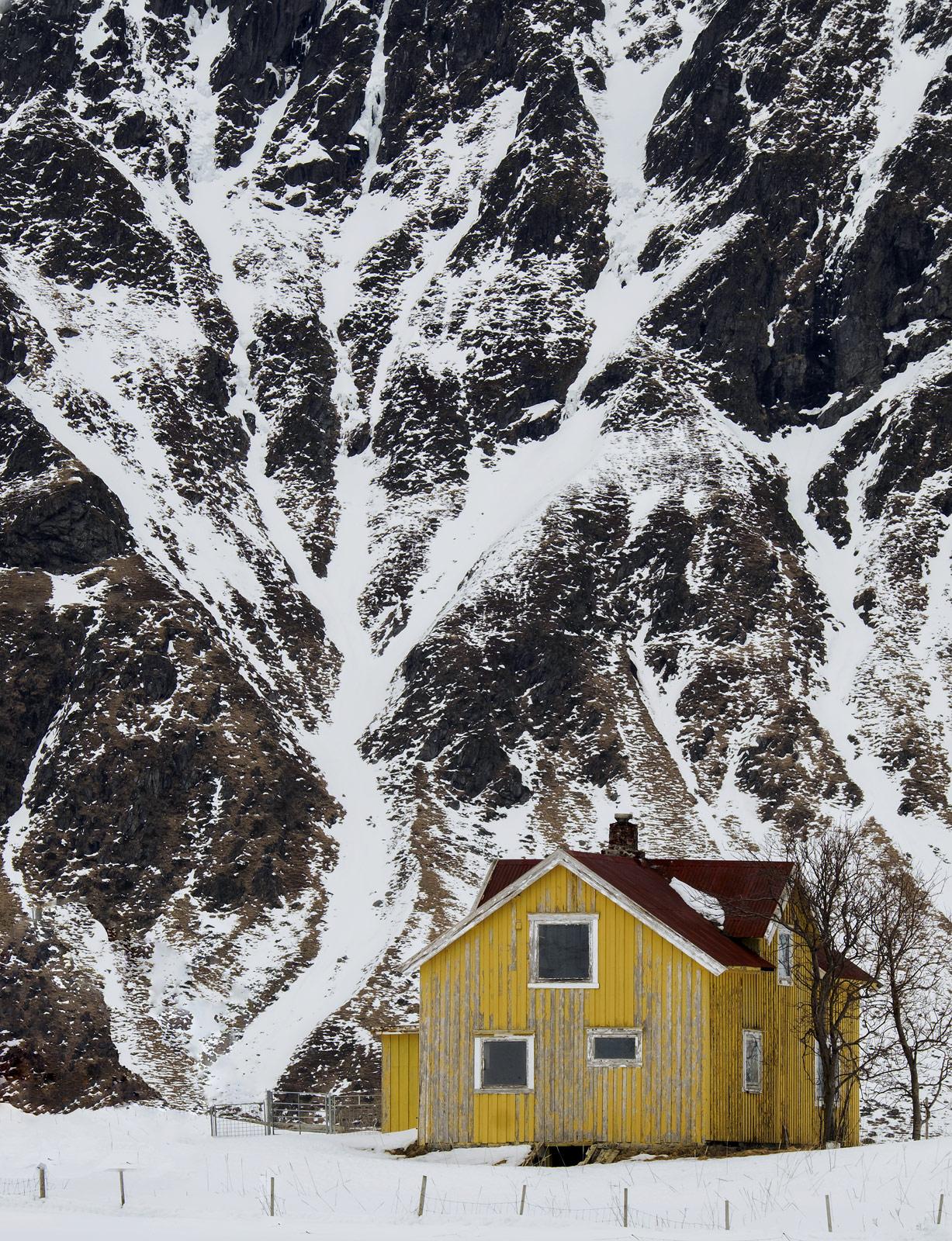 Tree House Flakstad, Flakstad, Lofoten, Norway, white, tree, edifice, snow, house, wind, photo