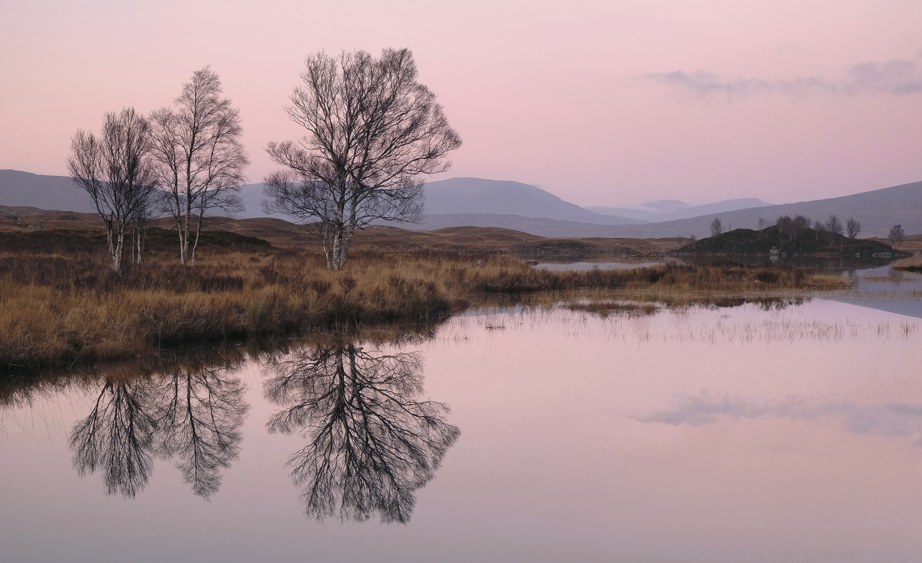 Shortly after sunset the sky above Loch Ba turned pink which duly reflected in the motionless waters of the loch. Two large...