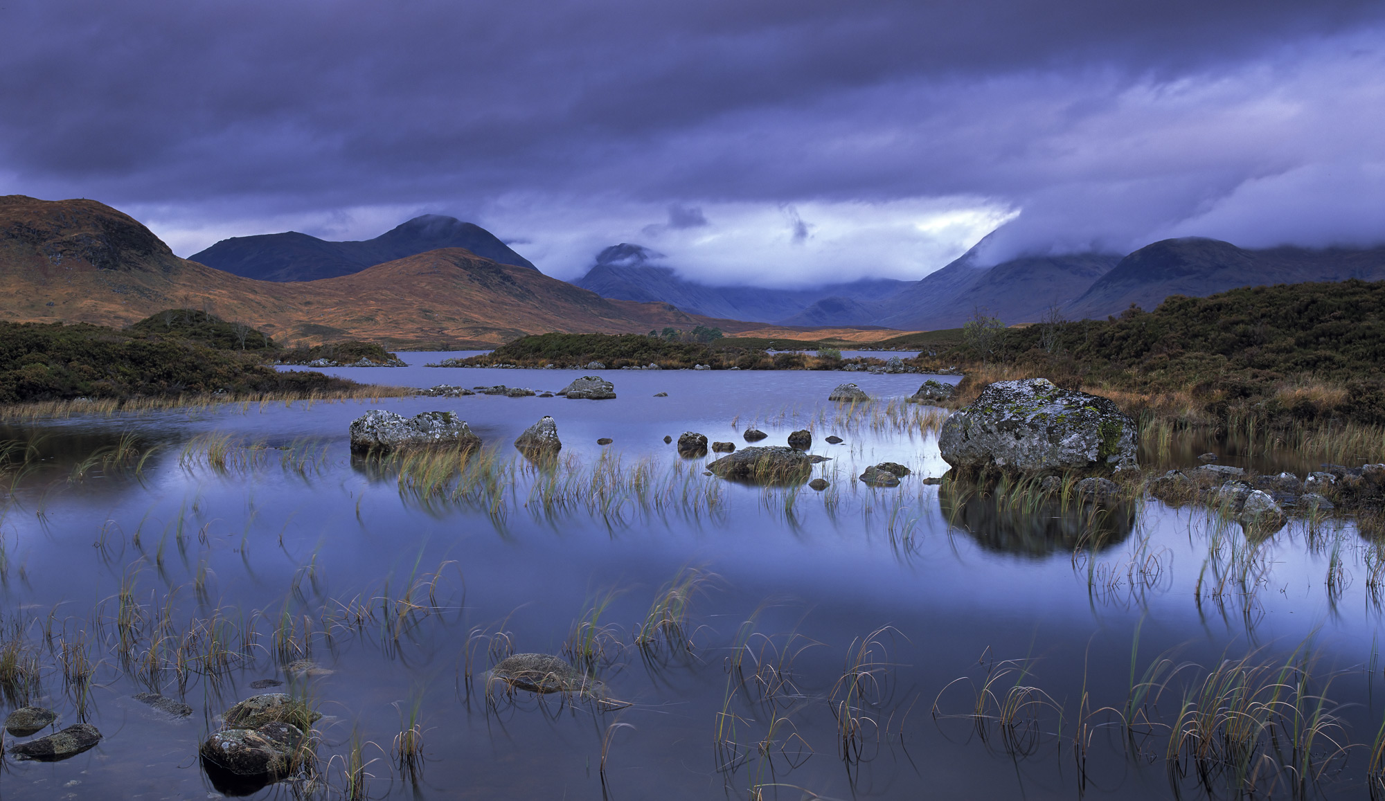 An hour before sunrise at Rannoch moor I made my way in near darkness down to the shoreline and set up by a reed bed to the sound...