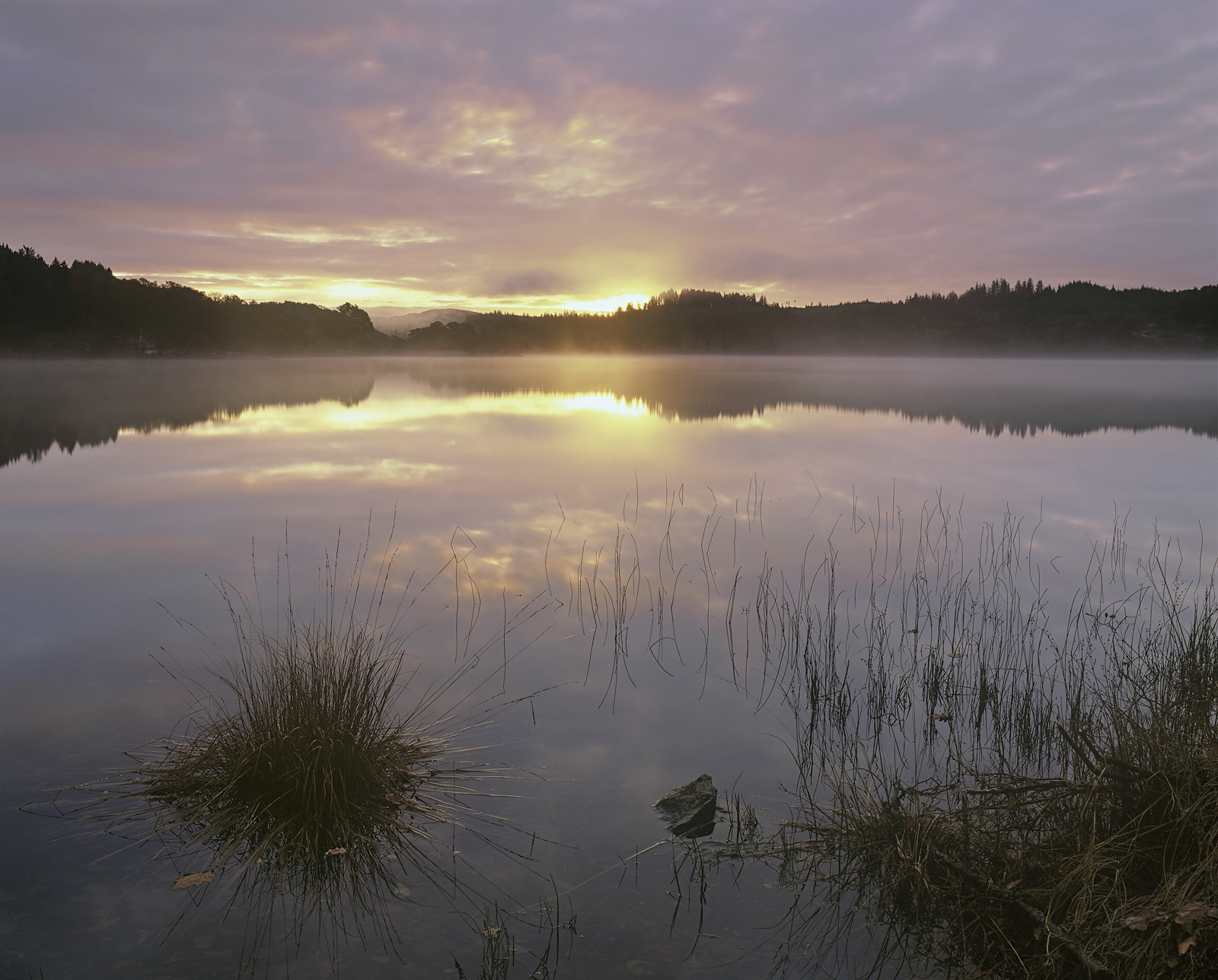 Urchin Achray, Loch Achray, Trossachs, Scotland, autumn, sunrise, mirror, smooth, loch, colours, sun, horizon, grasses, photo
