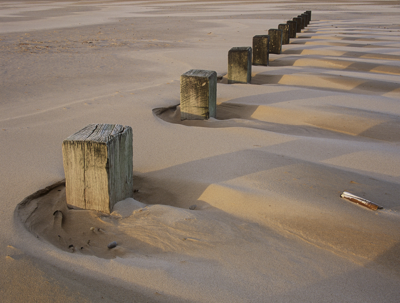 Findhorn has few features on its beach save a few stumps in the low tide sands and some partially submerged timber groynes that...