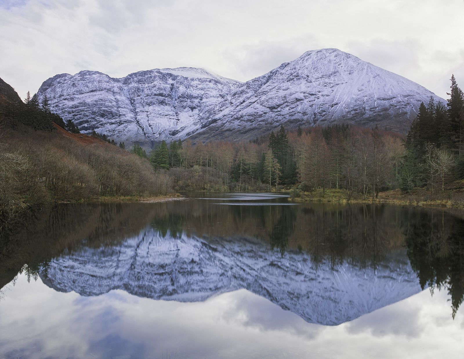 This lovely little pool of water at the end of the wooded road that leads past The Clashach Inn frequently becomes a perfect...