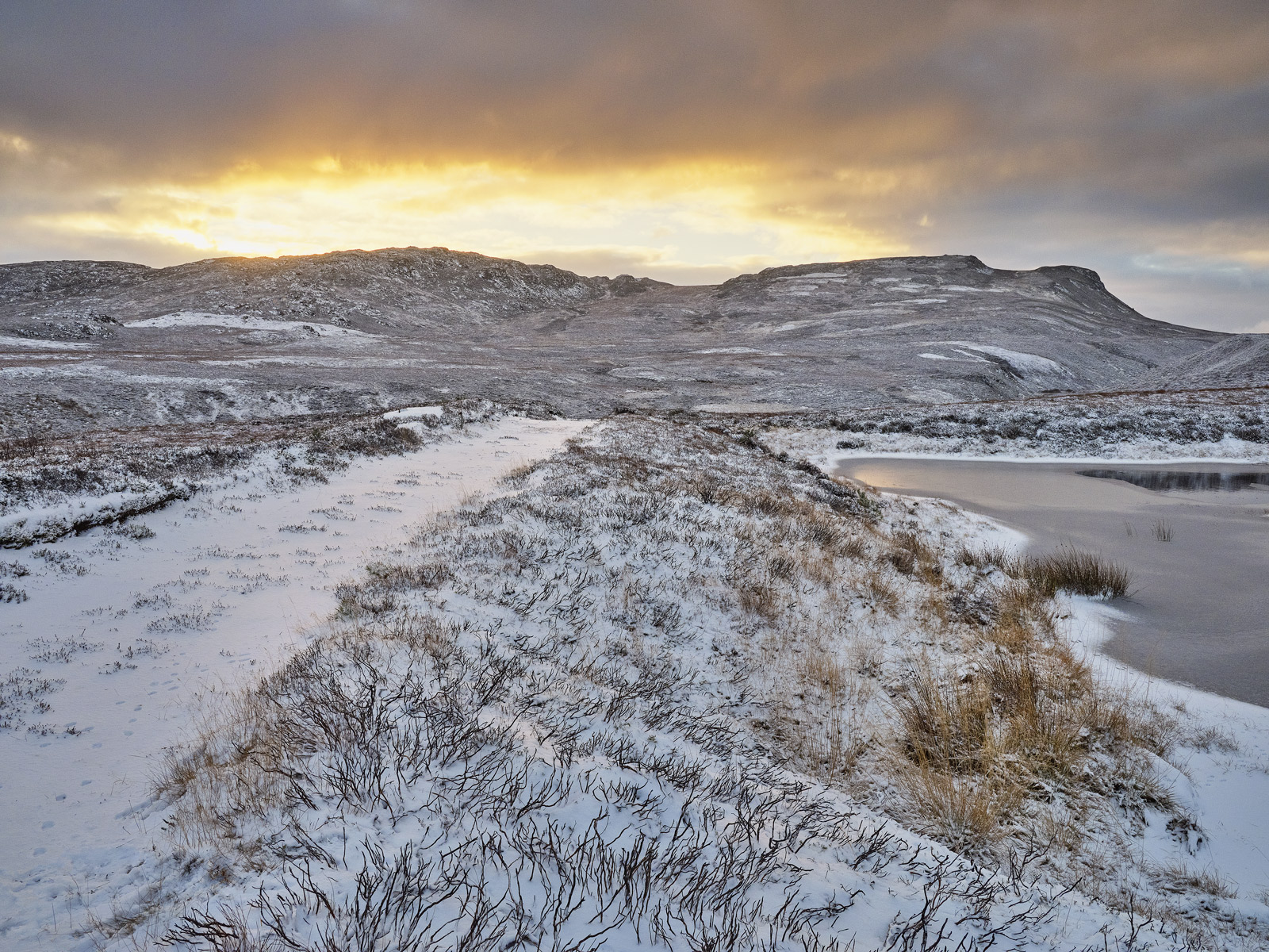 I arrived at the summit hill on Dava Moors treeless plateau and was greeted largely as expected by a fresh dusting of snow which...
